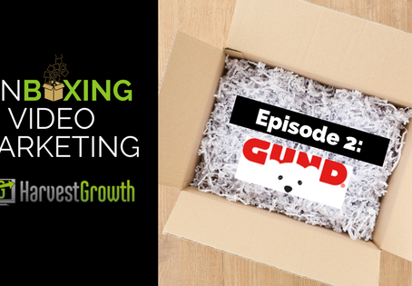 Unboxing Video Marketing - Episode 2: Gund Peek-a-Boo Puppy