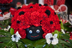Lady Bug - All flowers