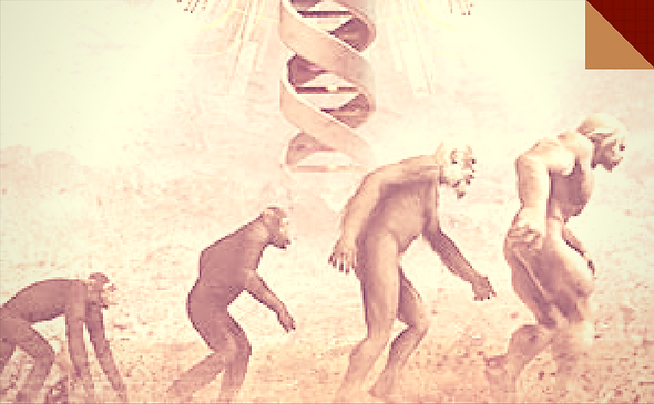 304_antropología_AE.png
