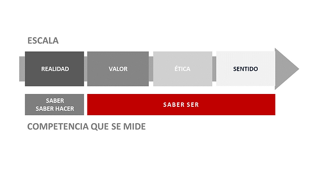 DO_ModeloCompetencias.png