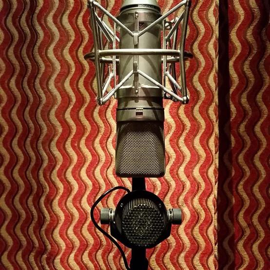Vocal mic.jpg