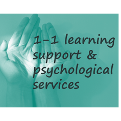 1-1 learning support and psychological services