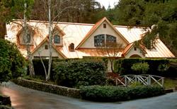 Custom Copper Roof