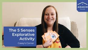 5 Senses Exploration Activity