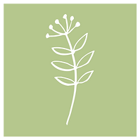 Psychotherapy icon green-2.png