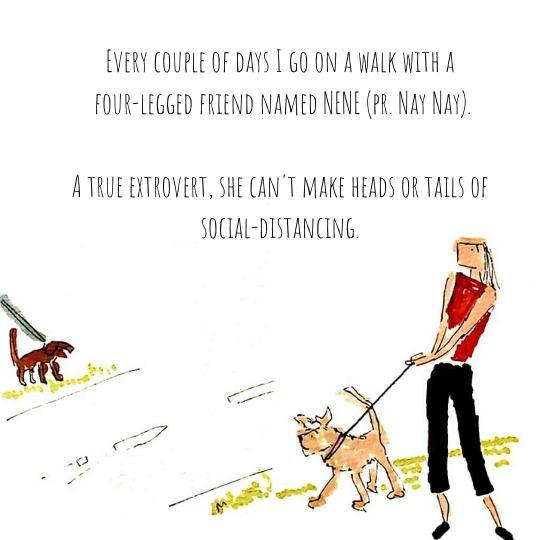 Dog Walking and Social Distancing