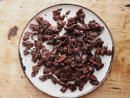 Chocolate Pecan Bites
