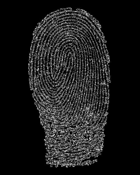 fingerprint-1382652_1920.png