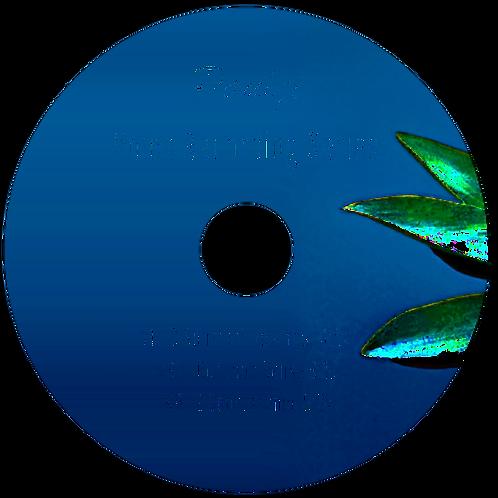 Voice Recordings 10-12