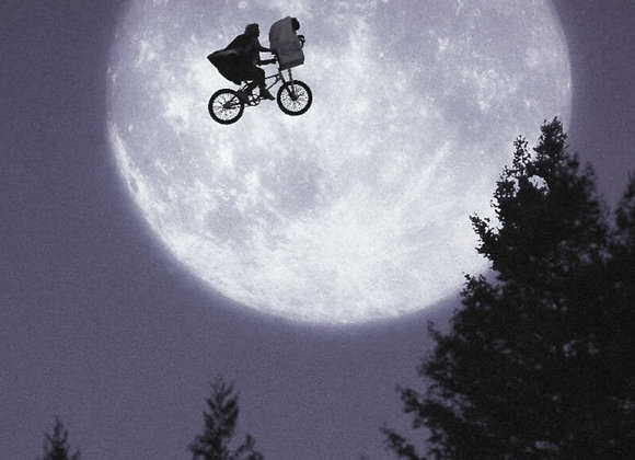 BY THE MOON (SAMPLE PACK)