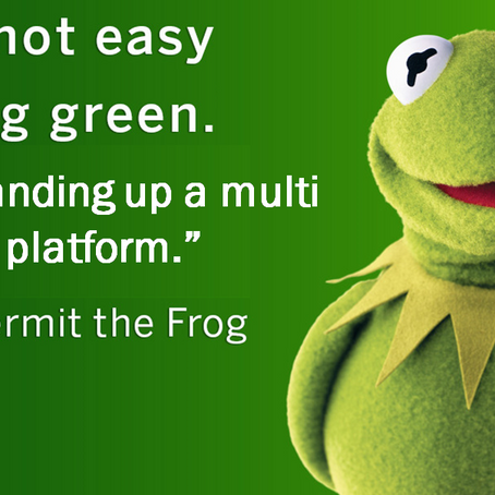 It's Not Easy Being Kermit. Or Standing up a Multi Sided Platform in Healthcare.