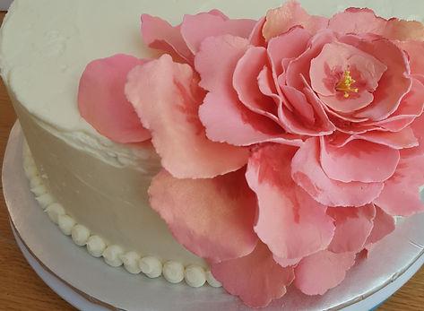 Sweet Willamina, Gourmet Cupcakes, Bangor, Maine