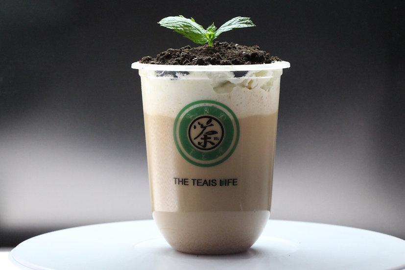 盆栽拿铁/Potted latte
