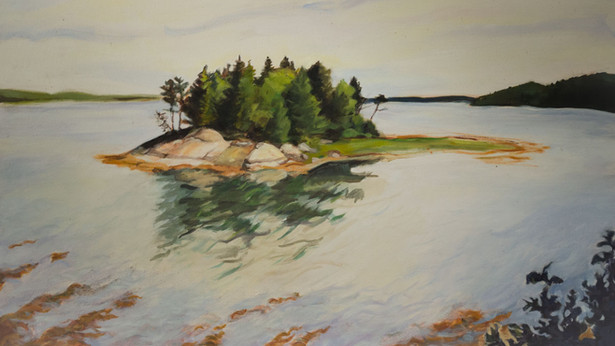 Island in Cobscook Bay