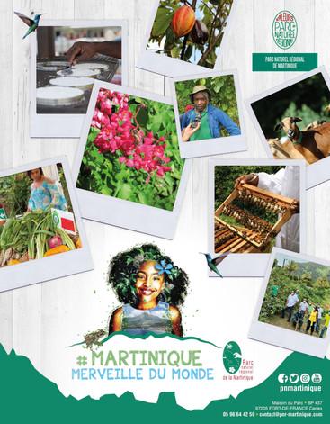 PARC NATUREL REGIONAL DE LA MARTINIQUE.j