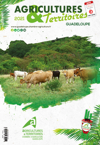 CHAMBRE D'AGRICULTURE GUADELOUPE