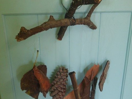 Nature Mobiles