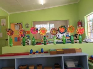 flowers in a row in classroom