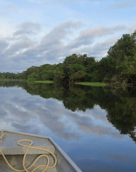 From the Amazon to the Emerald Isle.jpg