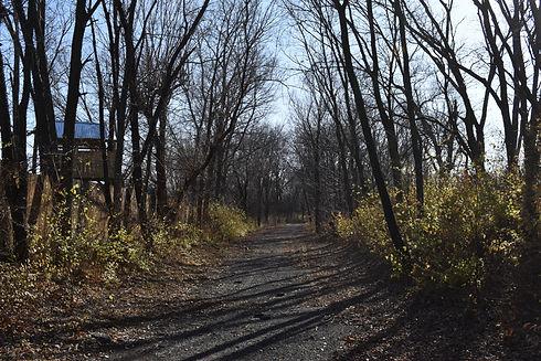 Diamond Crest Trail