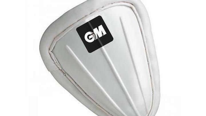 GM Cricket Box
