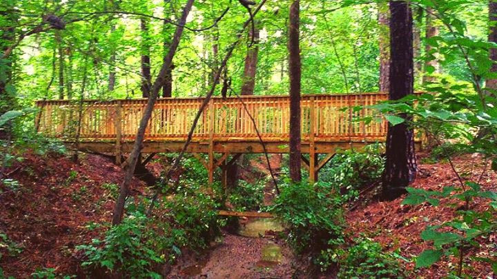 Creek Bridge Build
