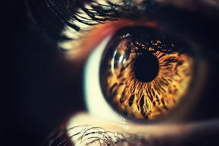 Human eye iris close up.jpg