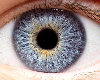 Macro photo of human eye, iris, pupil, e