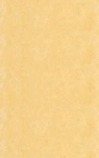 SKL85017