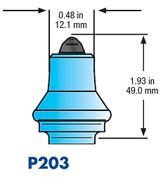 P203.png