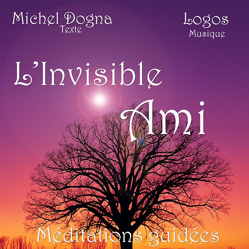 L'Invisible Ami