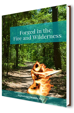 Forged in the Fire and Wilderness Cover.