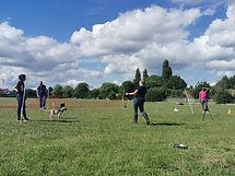 Dogworthy Dog Training Puppy Classes