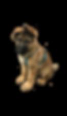 eraser_2018-08-15_02-45-08.png