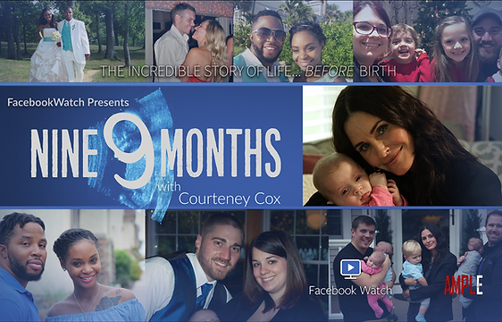 9 MONTHS POSTER LANDSCAPE small.png