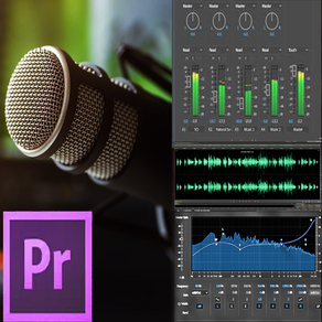 Audio editing tools (for music, podcast, video & films using Premiere)...