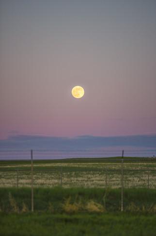 Full Moon in South Dakota