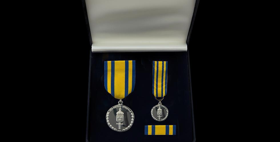 GSS Silver - Försvarsmaktens tjänstgöringsmedalj för rikets försvar