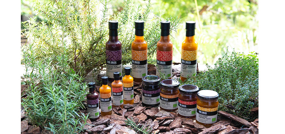 Our Products SoulBrasil
