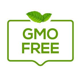 free-icon-logo-non-gmo-food-label-symbol