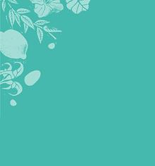 lamazuna background green.png