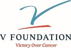 v_foundation_correct_logo.jpg