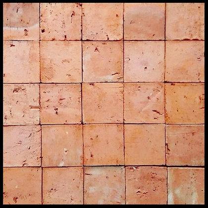 PLAQUETA NATURAL SALMÃO 10x10