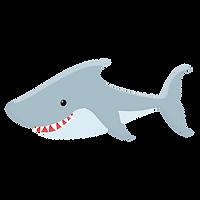 Sea animals'-44.png