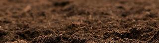 Tierra para sembrar