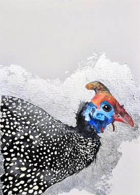 Guinea Fowl (sold)