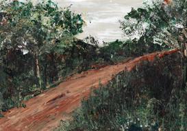 Rain in the bush (for sale)