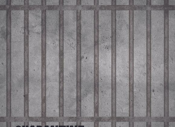 Quarantine 12x12 Paper