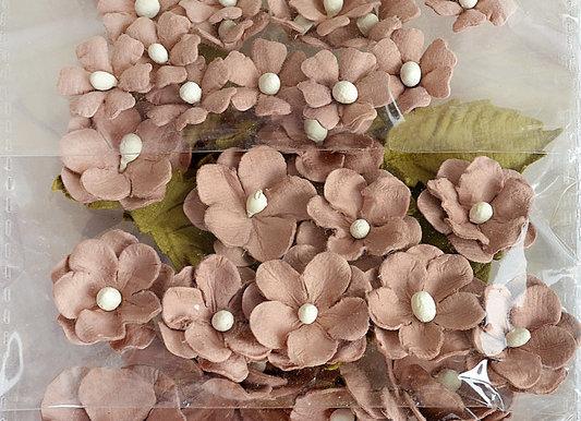 Hazelnut Botanical Potpourri Flower Embellishment