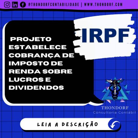 Projeto estabelece cobrança de Imposto de Renda sobre lucros e dividendos